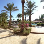 Jaz Almaza Beach Resort의 사진