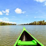 A ride in a Canoe through the backwaters.