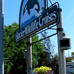 Wildlife Cruises Available Nearby