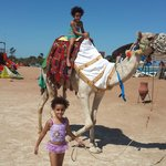 riding camel on the beach