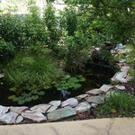 Koi pond outside our room restful and sweet'