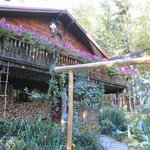 Foto de Welch Mountain Chalet Bed & Breakfast