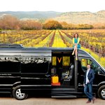 Mustard season — ahhhh. Verve welcomes you to Wine Country!