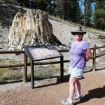 "that's me by the ""big stump"""