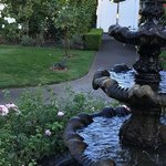 The fountain where we had the ceremony & Mr. Squirrel