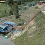Alpine coaster (see from aerial tram)