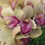 Orchids are used in the beautiful flower arrangements.