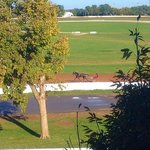 view from my room of the Red Mile track during morning training