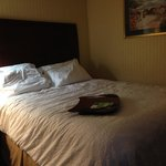 Foto de Hampton Inn by Hilton Niagara Falls-North Of The Falls