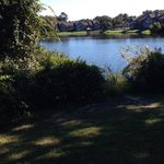 Swing near dog walk area overlooks a pretty pond. Picnic table & 1 'state park' charcoal grill a