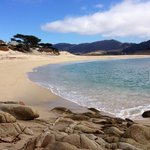 Dont miss Carmel river state beach!