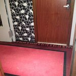 filthy carpets, awful decor in the corridor!