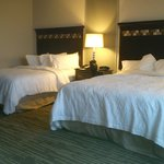 Photo de Hampton Inn & Suites Denver/Airport-Gateway Park