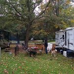 Camped with my sister and brother in law.  Steeler fans!