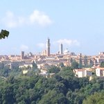 Views of Siena from La Strega