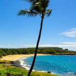 ภาพถ่ายของ Four Seasons Resort Lana'i at Manele Bay