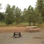 Circle Pines KOA Campground resmi