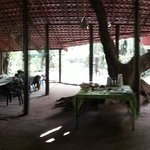 Foto de Bamboo Banks Farm Guest House