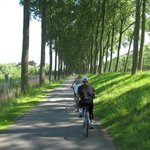On the trail to Damme
