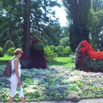 A visit to Mainau, the flower island!