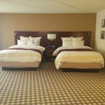 Twin Queen Size Beds