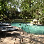 Photo of Londolozi Varty Camp
