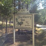 Blackberry Inn at Yosemite Foto