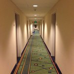 Foto SpringHill Suites Seattle Bothell