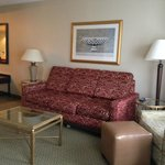 Hampton Inn National Airport, living room