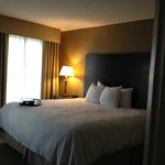 Hampton Inn National Airport, bedroom