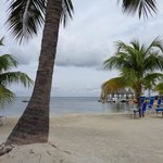 Bilde fra Marriott Key Largo Bay Beach Resort