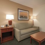 Hampton Inn Hattiesburg King Sofa Room