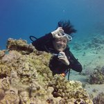 Red Sea Dive Centerの写真