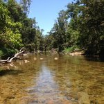 Crystal clear waters in the creek, with just enough rocky bits to make it a bit challenging