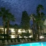 Beautiful night pic from the pool