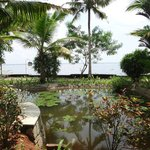 Photo de Purity at Lake Vembanad