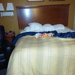Foto Candlewood Suites League City