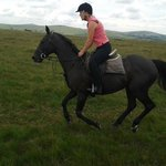 Enjoying a canter on a quality horse on Dartmoor