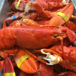 fresh, hot, New England lobster - as much as you can eat. really.