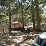 Mather Campground Foto