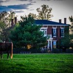 Award-winning Kentucky Farmstay on the Bourbon Trail