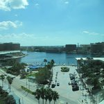 Foto de Embassy Suites Tampa - Downtown Convention Center