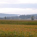 Bilde fra Clearview Farm Bed and Breakfast