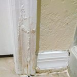 Bathroom door casing was rotted