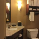 Foto de Hampton Inn Omaha / West Dodge Road (Old Mill)