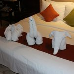 Animals made from towels