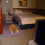 King bed and room for dog bed