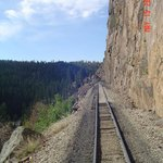 Railway is narrow gauge.  Picture of Highline