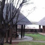 Foto de Mopani Rest Camp