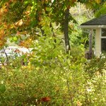 Cove Cottage in Autumn